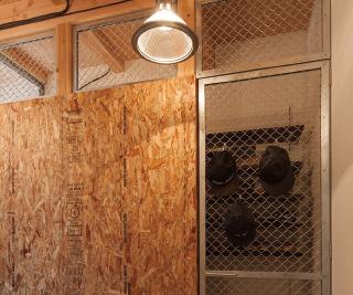 玄関のシューズクロークは構造用合板と金網フェンスでロックなテイスト