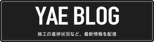 波多野ブログ